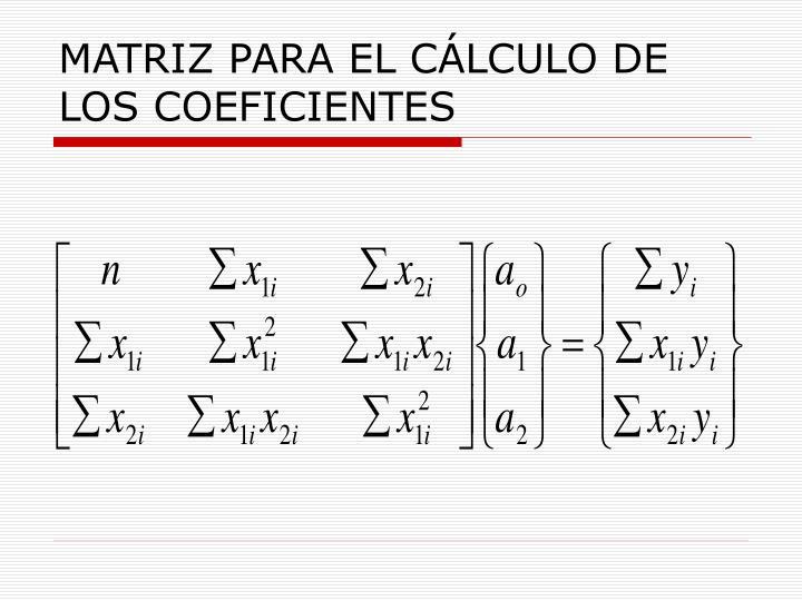 MATRIZ PARA EL CÁLCULO DE LOS COEFICIENTES
