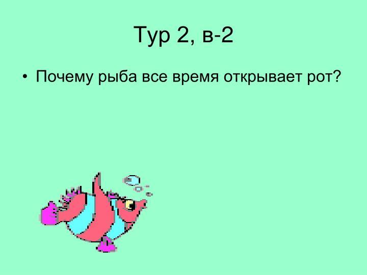 Тур 2, в-2