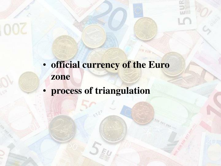 official currency of the Euro zone