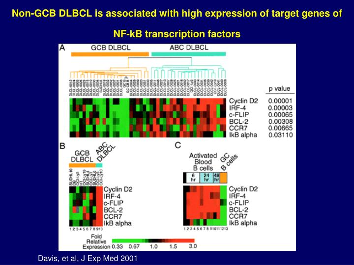 Non-GCB DLBCL is associated with high expression of target genes of NF-kB transcription factors