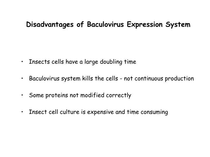 Disadvantages of Baculovirus Expression System