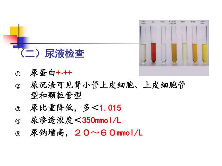 (二)尿液检查