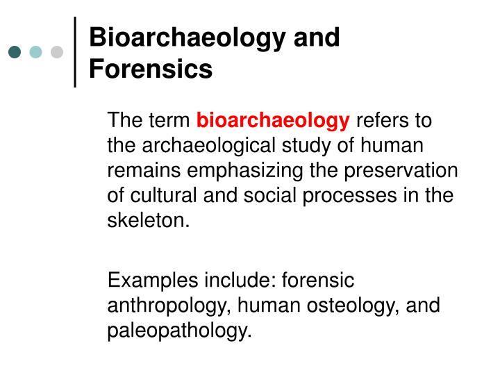 Bioarchaeology and Forensics