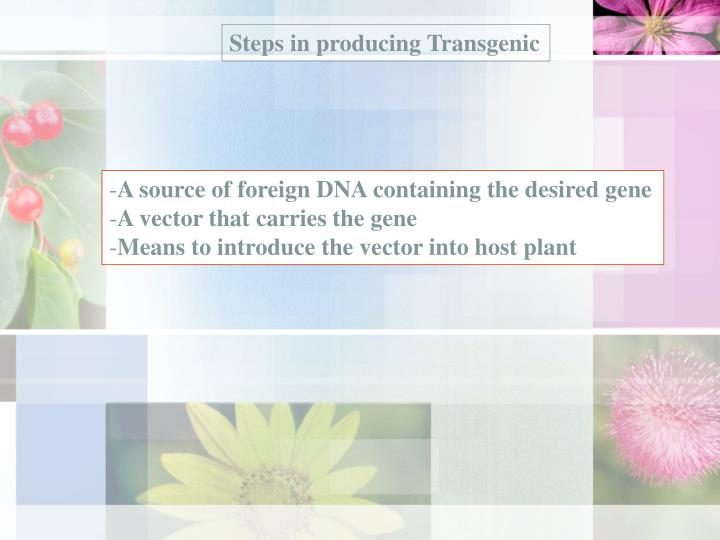 Steps in producing Transgenic
