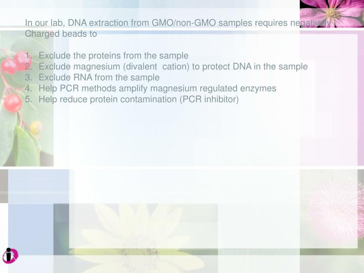 In our lab, DNA extraction from GMO/non-GMO samples requires negatively