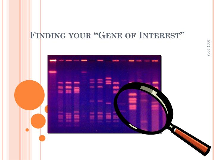 "Finding your ""Gene of Interest"""