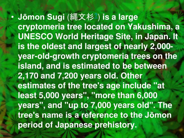 Jōmon Sugi