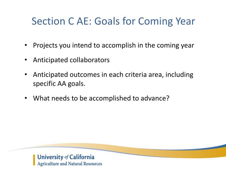 Section C AE: Goals for Coming Year