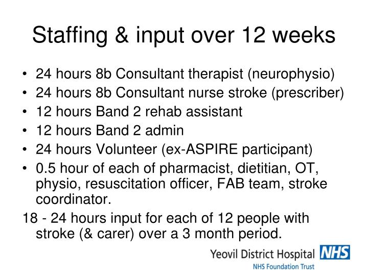 Staffing & input over 12 weeks