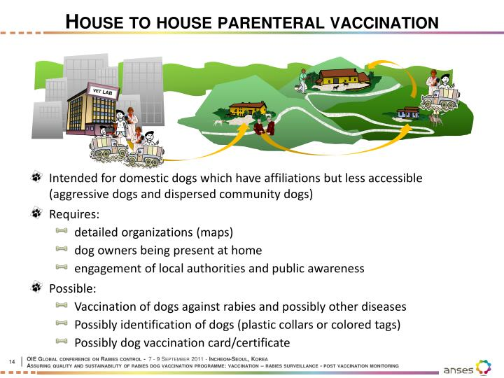 House to house parenteral vaccination