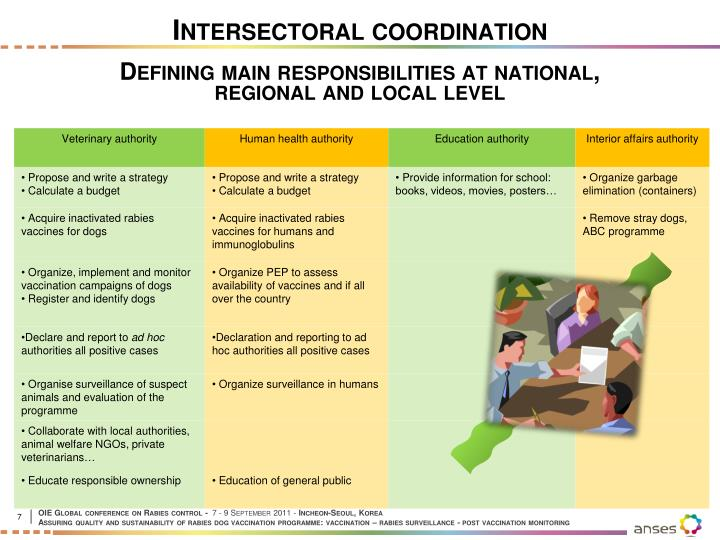 Intersectoral coordination