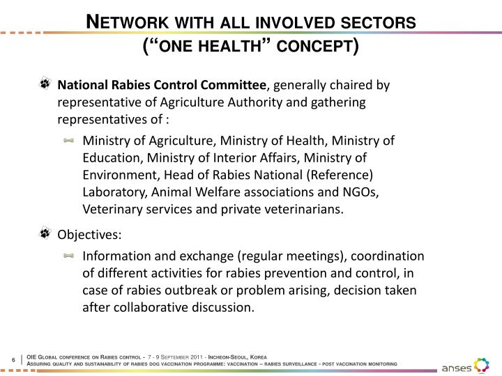 Network with all involved sectors