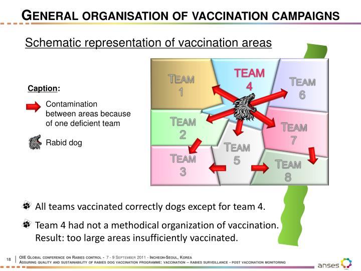 General organisation of vaccination campaigns
