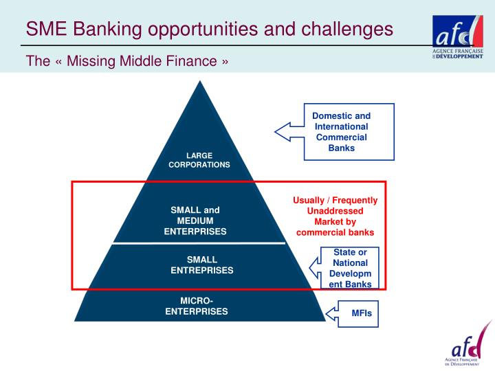 SME Banking opportunities and challenges