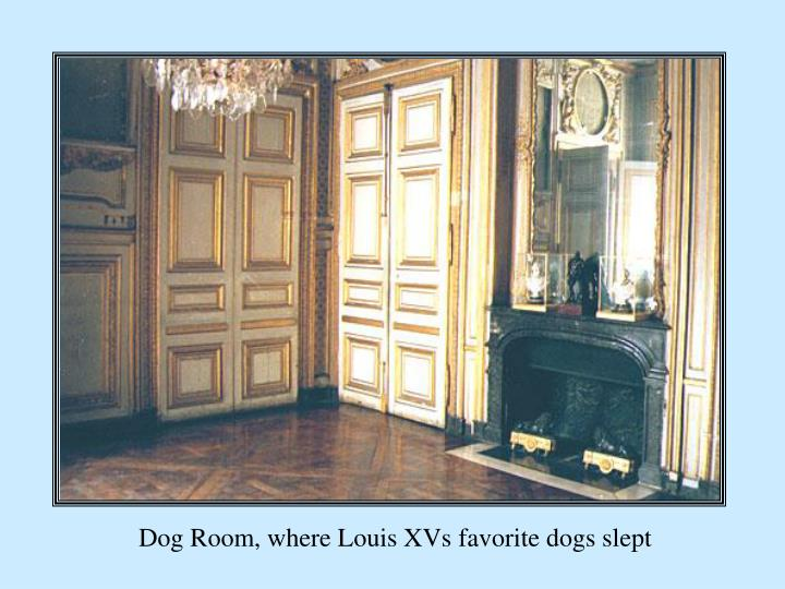 Dog Room, where Louis XVs favorite dogs slept