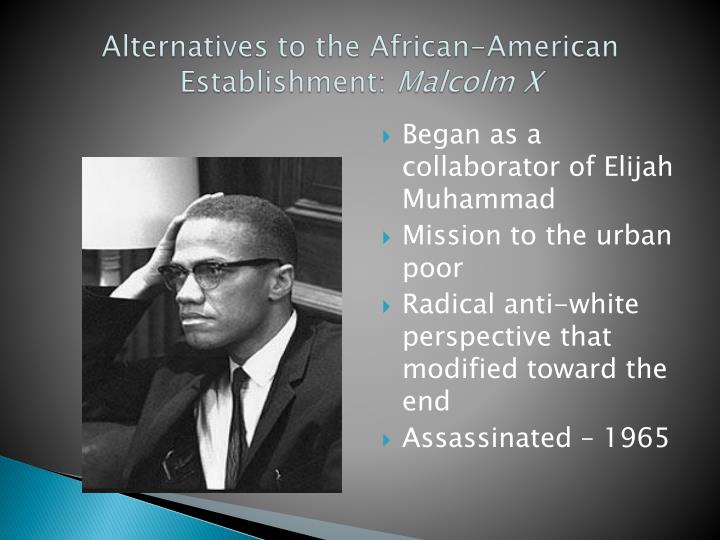 Alternatives to the African-American Establishment: