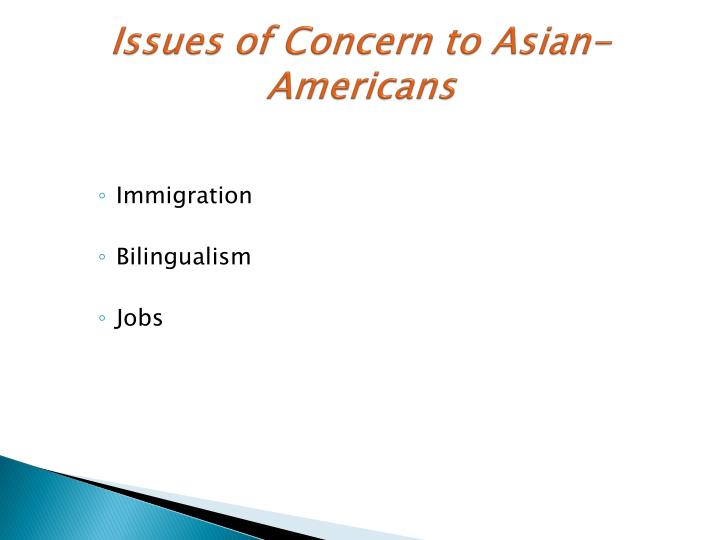 Issues of Concern to Asian-Americans