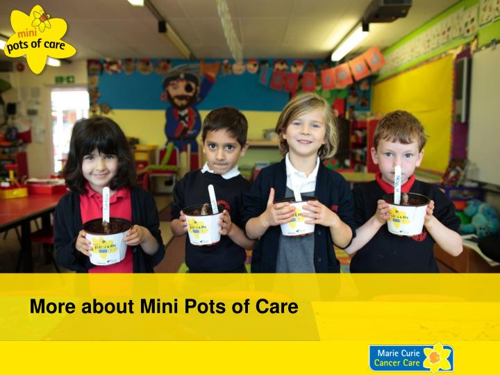 More about Mini Pots of Care
