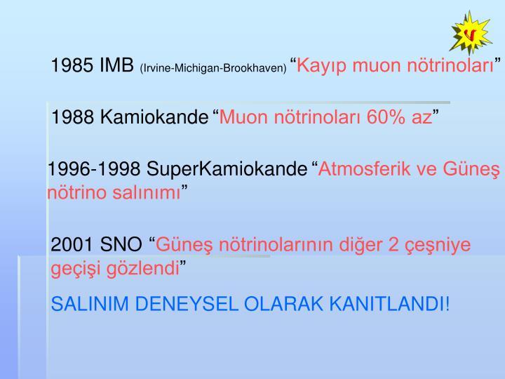 1985 IMB