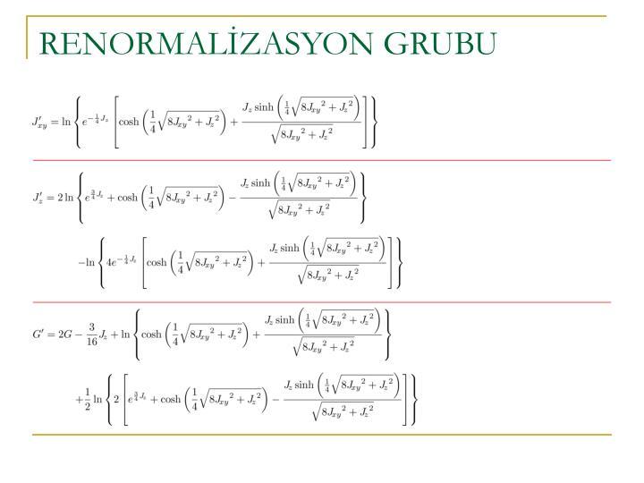 RENORMALİZASYON GRUBU