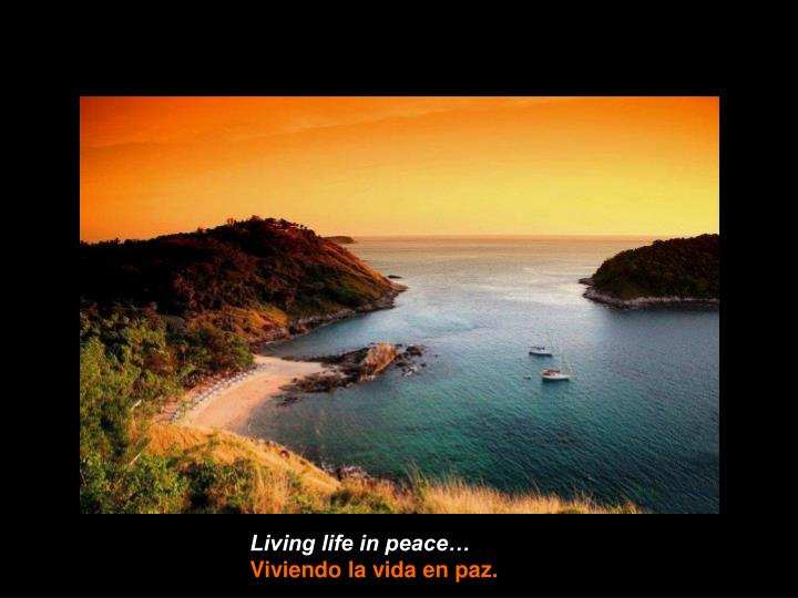 Living life in peace…