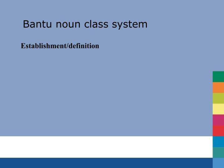 Bantu noun class system