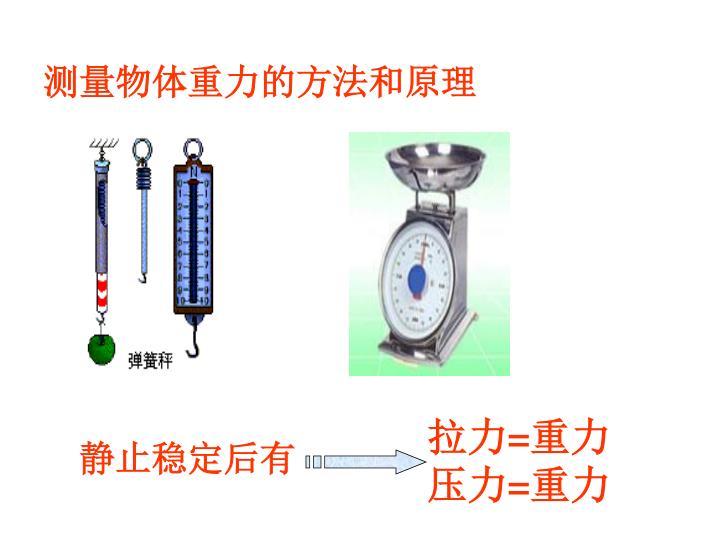 测量物体重力的方法和原理
