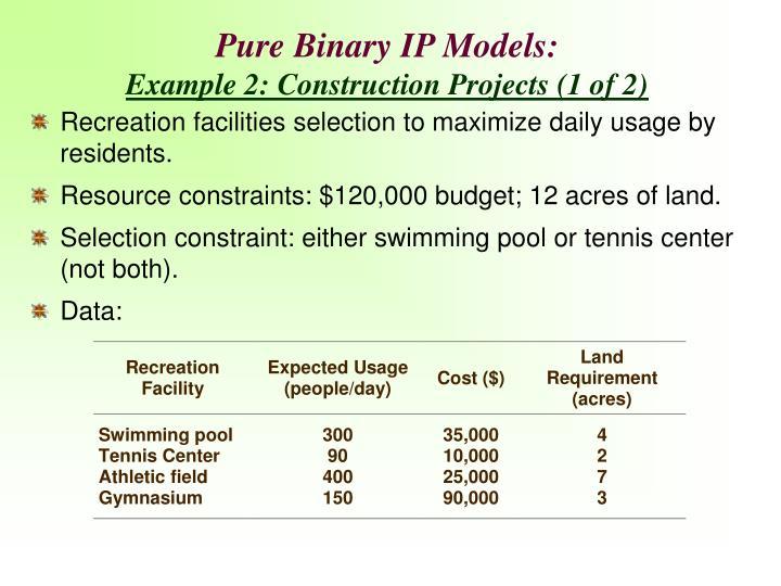 Pure Binary IP Models: