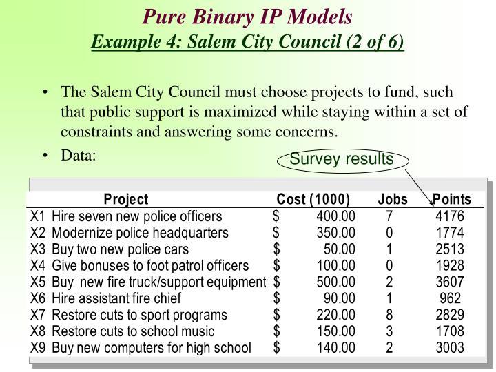 Pure Binary IP Models