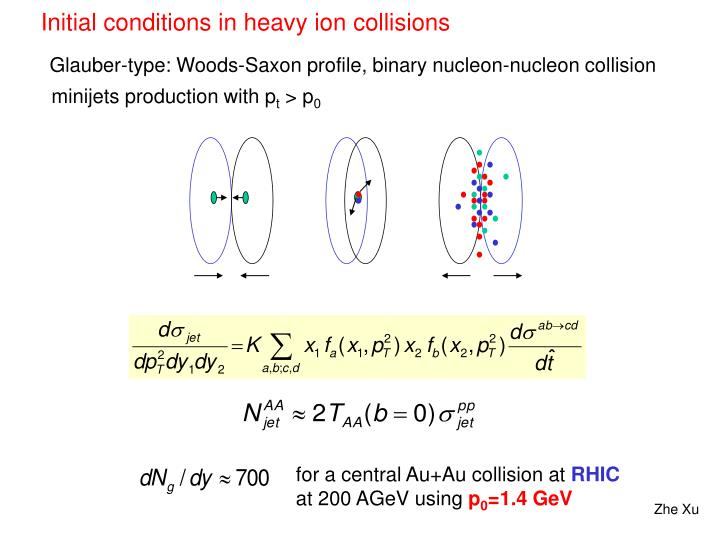 Initial conditions in heavy ion collisions