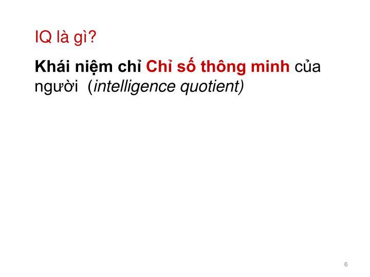 IQ là gì?