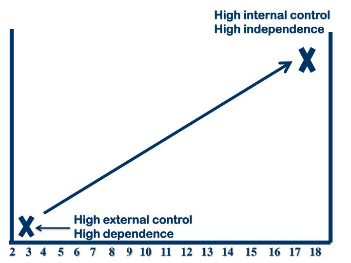 High internal control