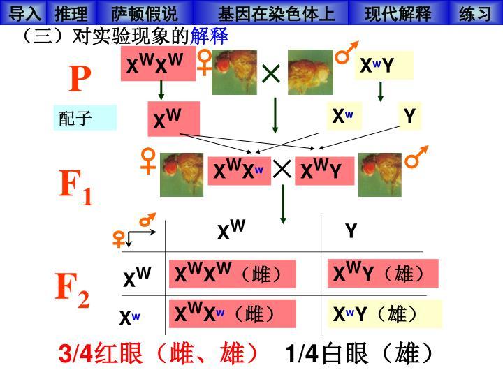(三)对实验现象的