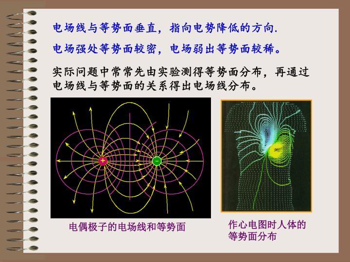 作心电图时人体的等势面分布
