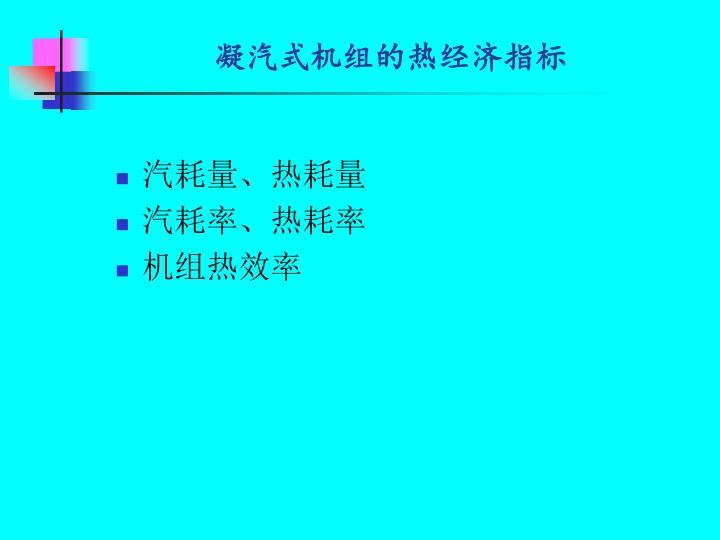 凝汽式机组的热经济指标