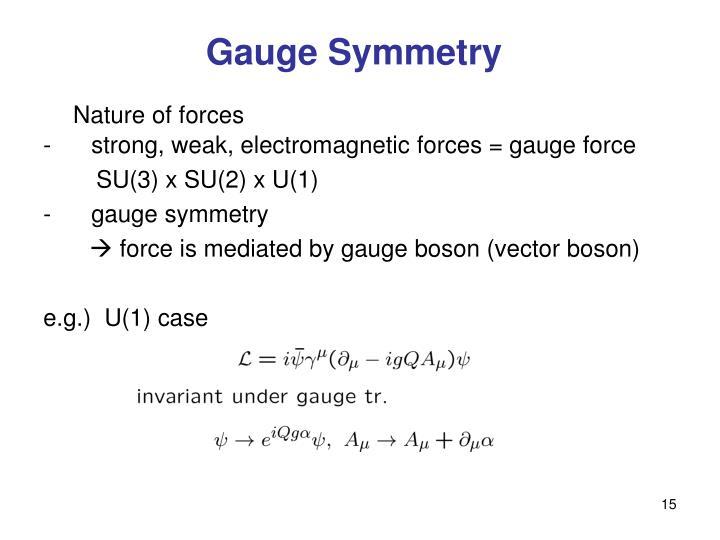 Gauge Symmetry