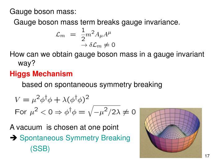 Gauge boson mass: