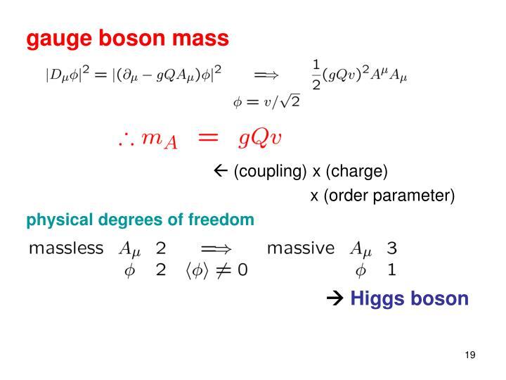 gauge boson mass