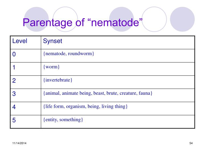 "Parentage of ""nematode"""