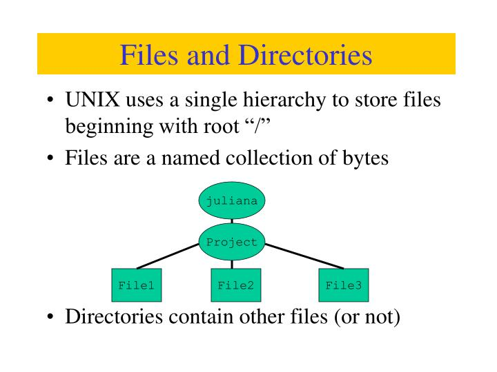 "UNIX uses a single hierarchy to store files beginning with root ""/"""