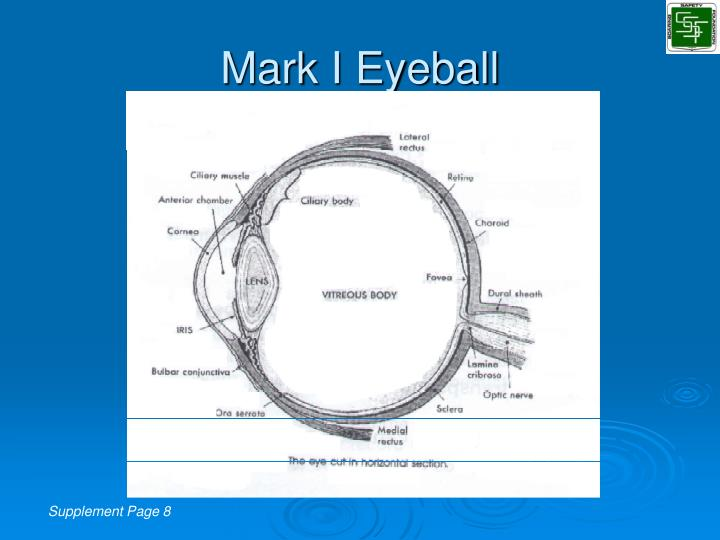 Mark I Eyeball