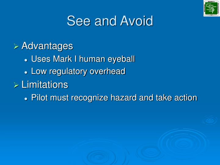 See and Avoid