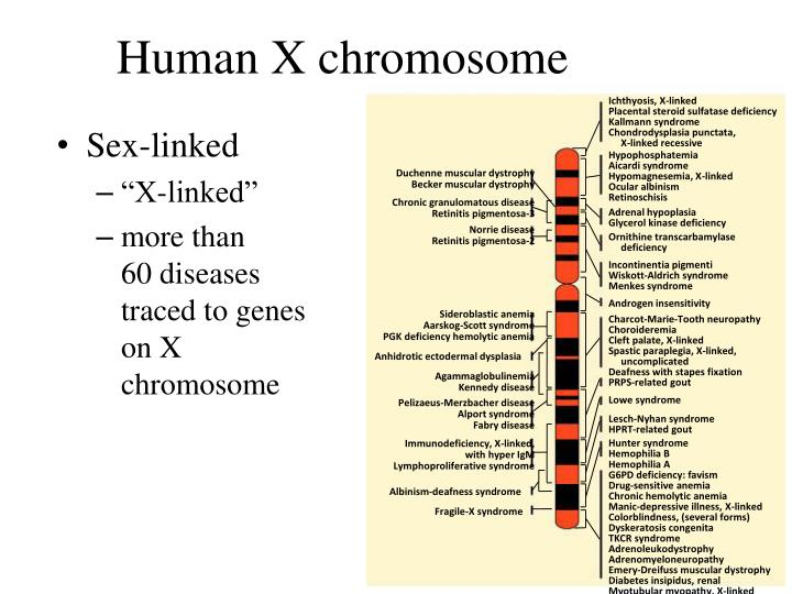 Ichthyosis, X-linked