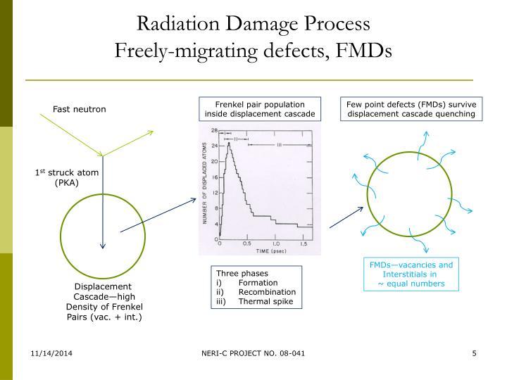 Radiation Damage Process
