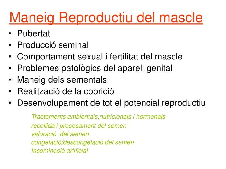Maneig Reproductiu del mascle