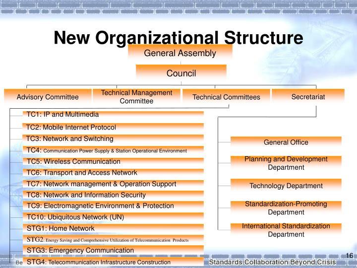 New Organizational Structure
