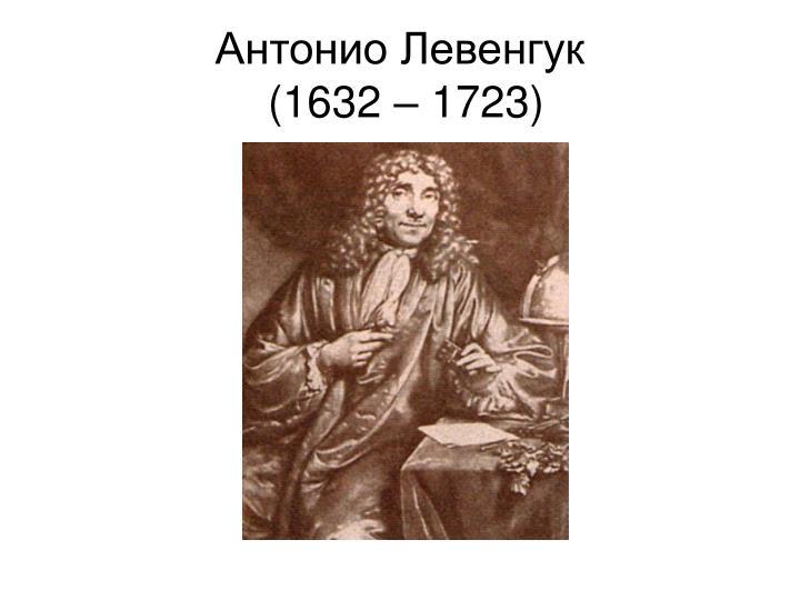 Антонио Левенгук