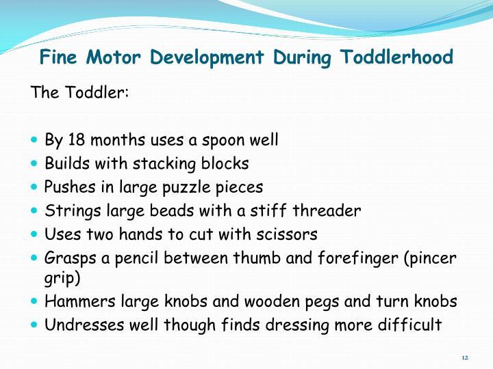 Fine Motor Development During Toddlerhood
