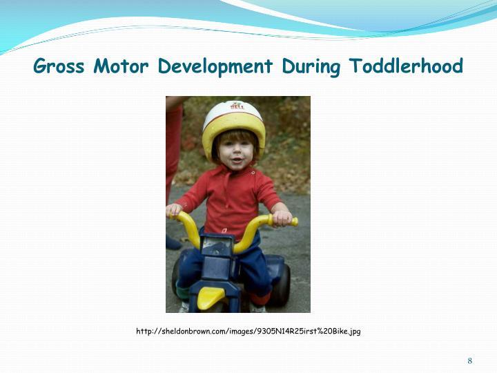 Gross Motor Development During Toddlerhood