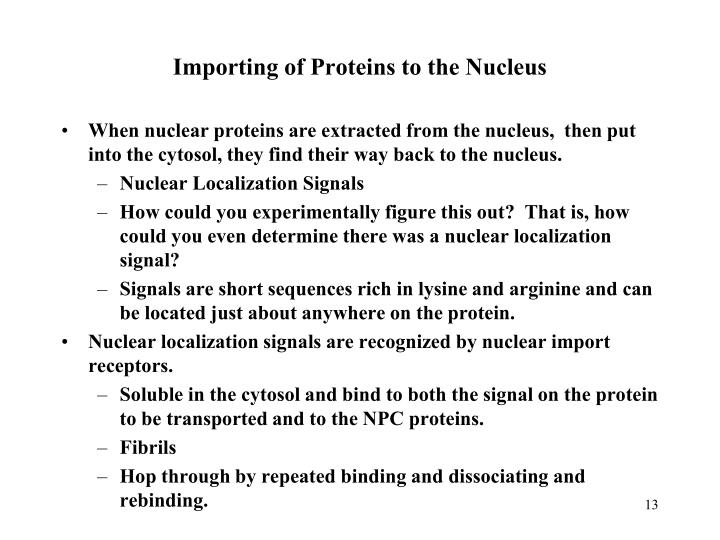 Importing of Proteins to the Nucleus